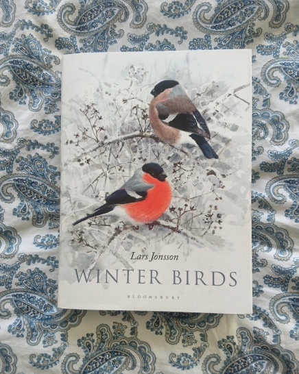 Winter Birds Lars Jonsson